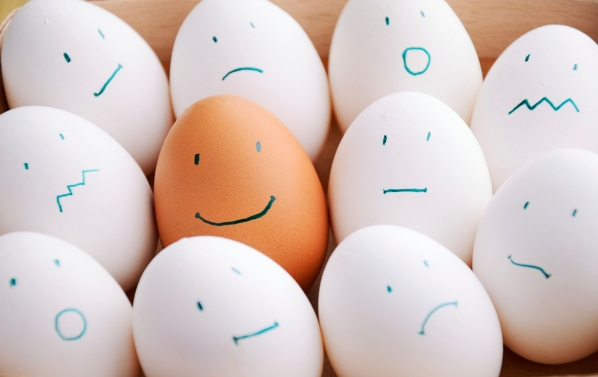 white and one brown smile eggs in tray horizontal